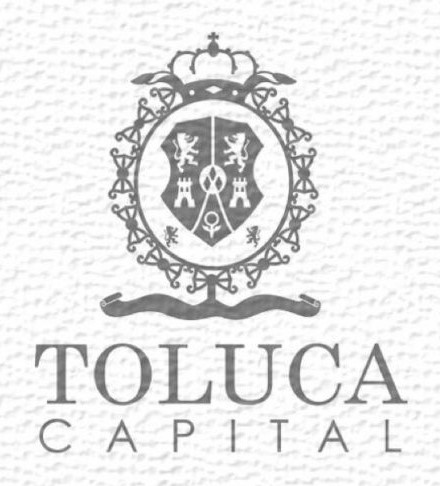 Logo for Municipality of Toluca de Lerdo.